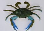 Aquatic Figure - Galapagos Crab