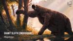 JMM Membership - Giant Sloth (Individual)